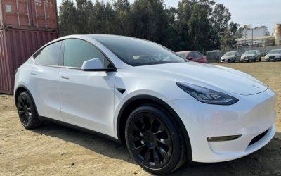 Desembarca un nuevo modelo de Tesla que recorrerá las calles de Chile