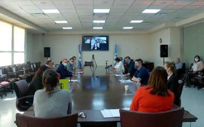 Diputados de Neuquén inician debate sobre la ley de fomento de vehículos eléctricos