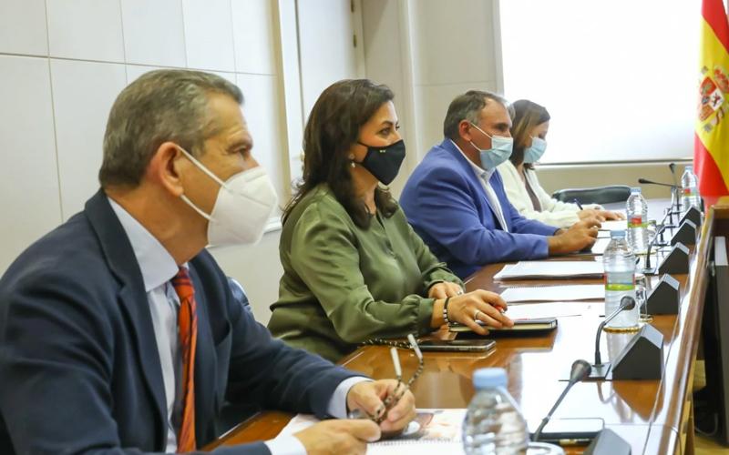 Concha Andreu propone una red de cargadores para coches eléctricos entre ciudades